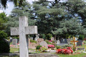 Friedhof Petit-Saconnex Genf 6(Zukunft CH)