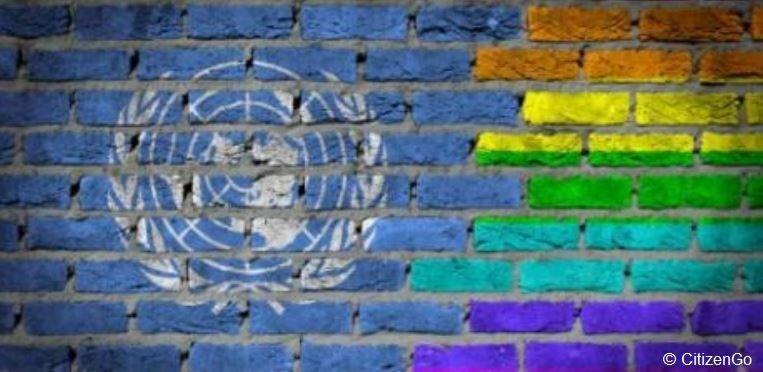 Pétition: L'agenda homosexuel n'a rien à faire à l'ONU!